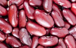 fagioli rossi messicani