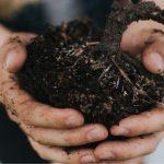 Tipi di terreno per l'orto: la tessitura
