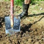 Come vangare l'orto