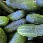 cetrioli verdi allungati