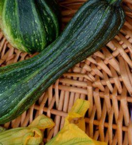 lo zucchino