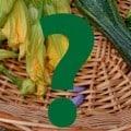 domande sull'orto