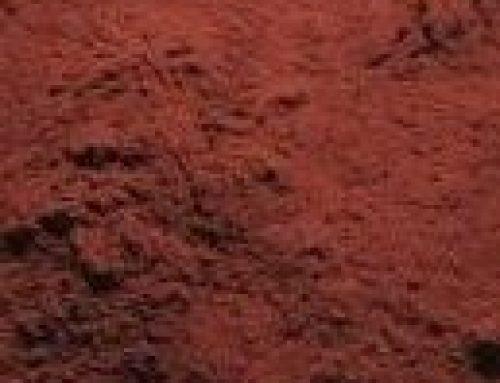 La farina di sangue come concime