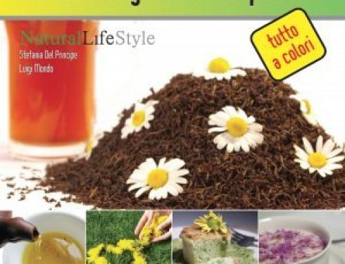 Fiori in cucina: coltivare, raccogliere e mangiare i fiori