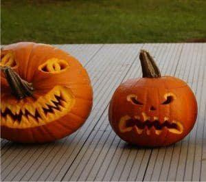 Essiccazione Zucca Di Halloween.Come Coltivare Le Zucche Ornamentali