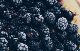 frutto delle more