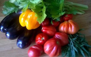 le verdure raccolte ad agosto
