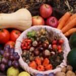 Raccolto di ottobre: frutta e verdura di stagione