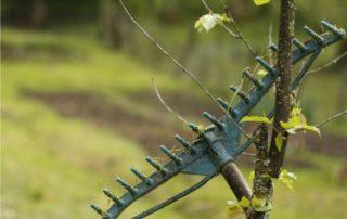 rastrello da foglie