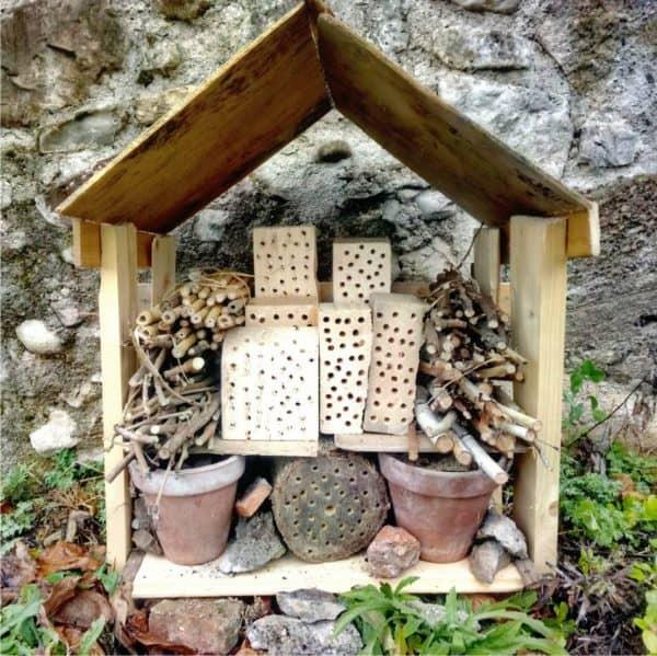 Bug's Hotel: costruire una casa agli insetti utili