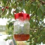 vaso trap rosso