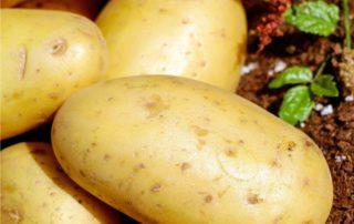 le patata
