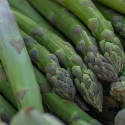 Come piantare le zampe di asparagi