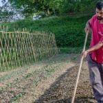 Corso di orto bio-intensivo in Emilia Romagna