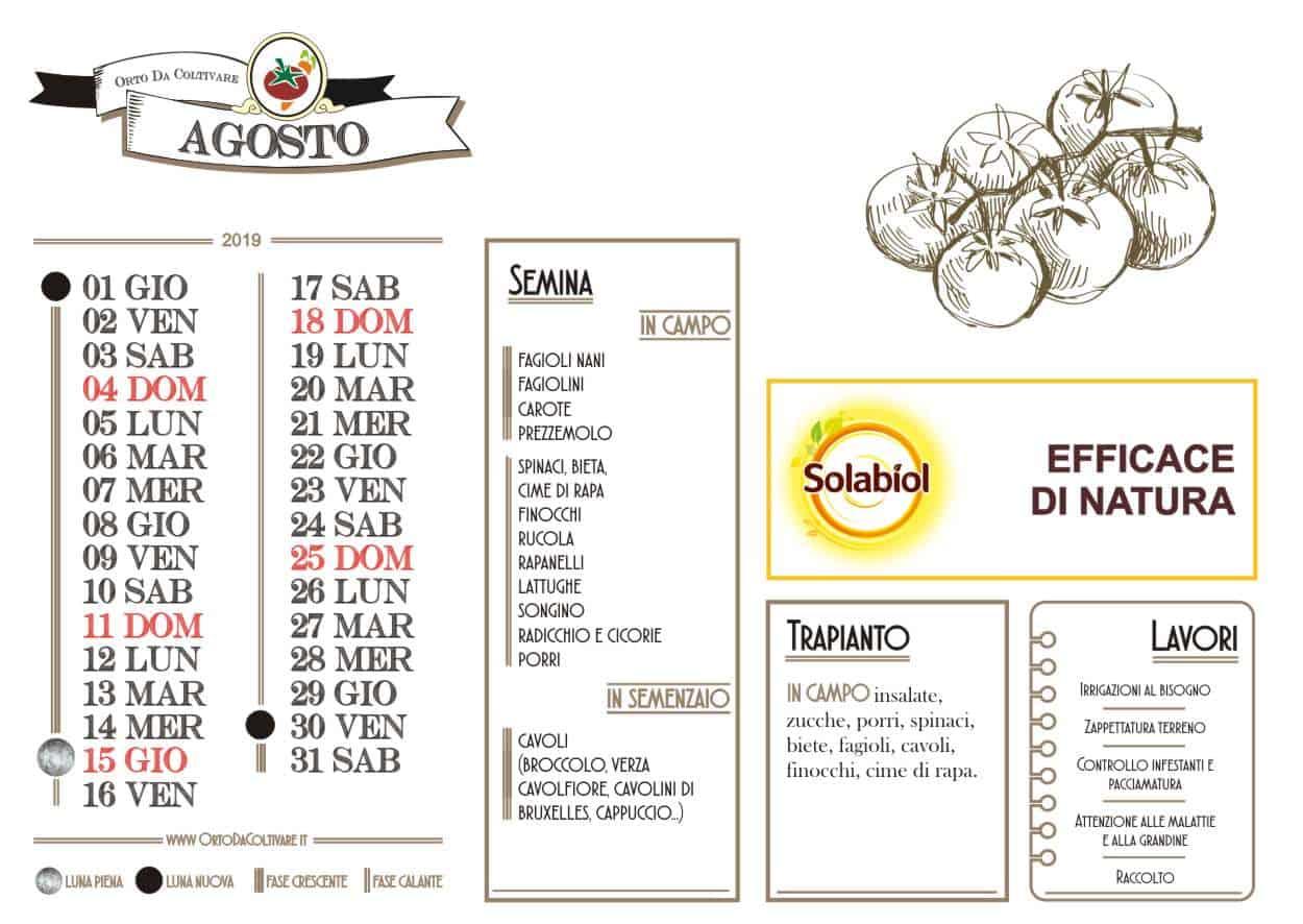 Calendario Cipolle 2019.Agosto 2019 Fasi Lunari Semine Nell Orto E Lavori