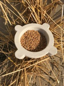 grano da macinare