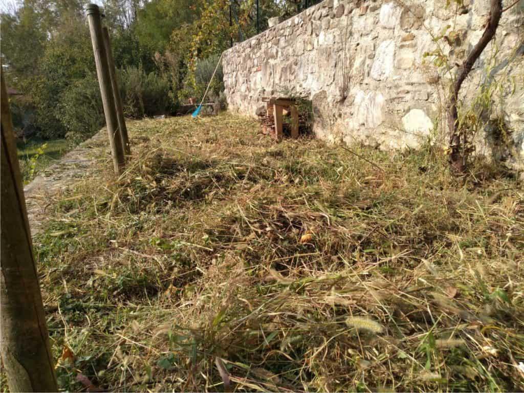 sfalcio dell'erba