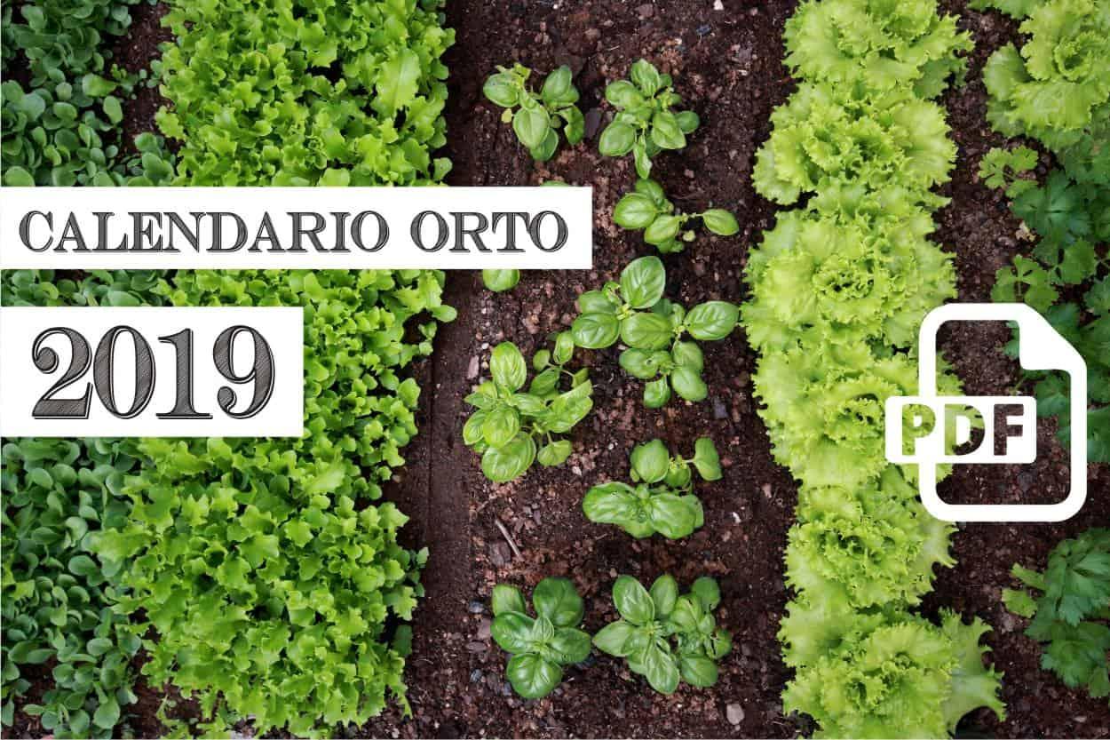 Calendario Semina Orto 2020.Calendario Dell Orto 2019 Di Orto Da Coltivare In Pdf