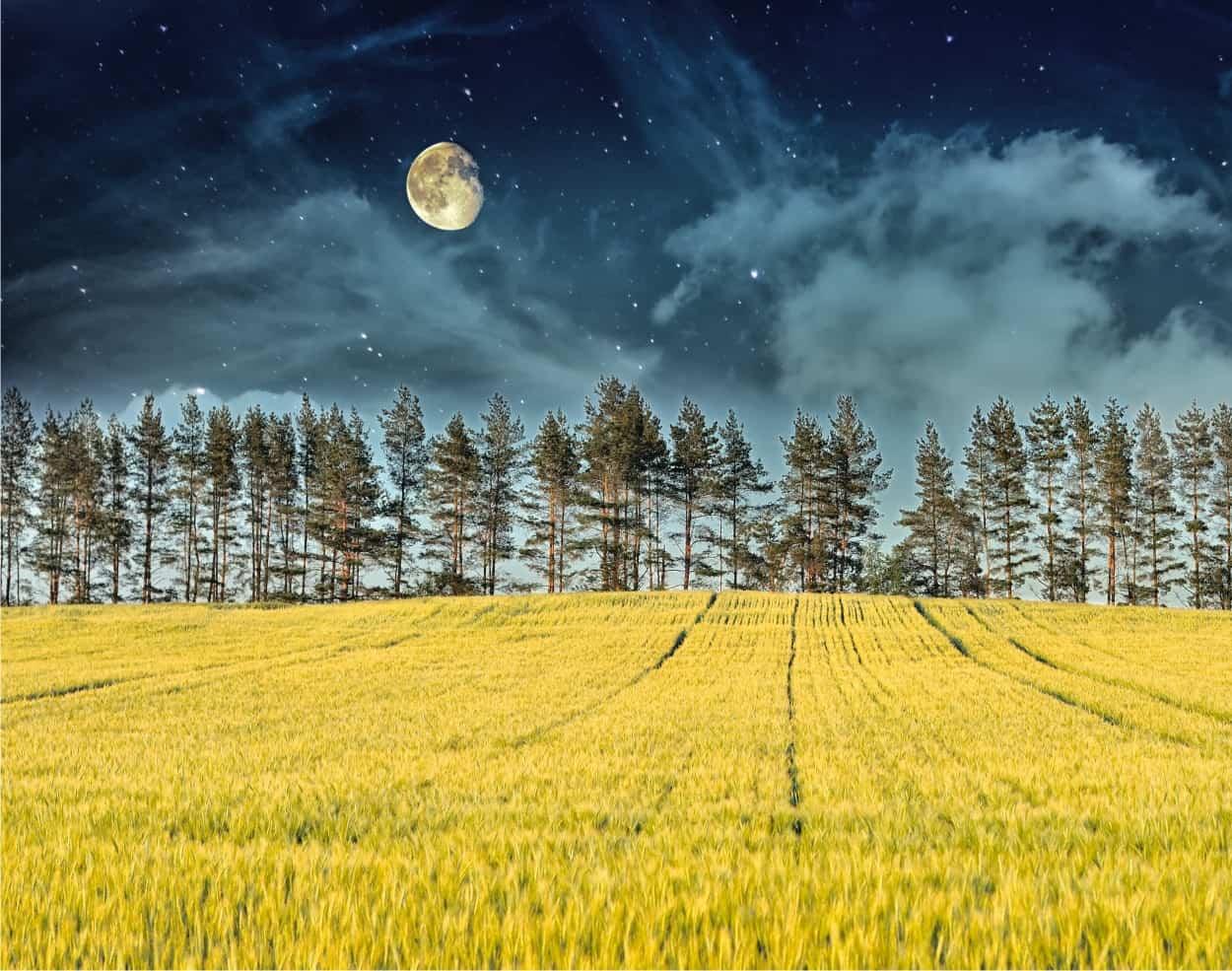 Fasi lunari: calendario luna 2021