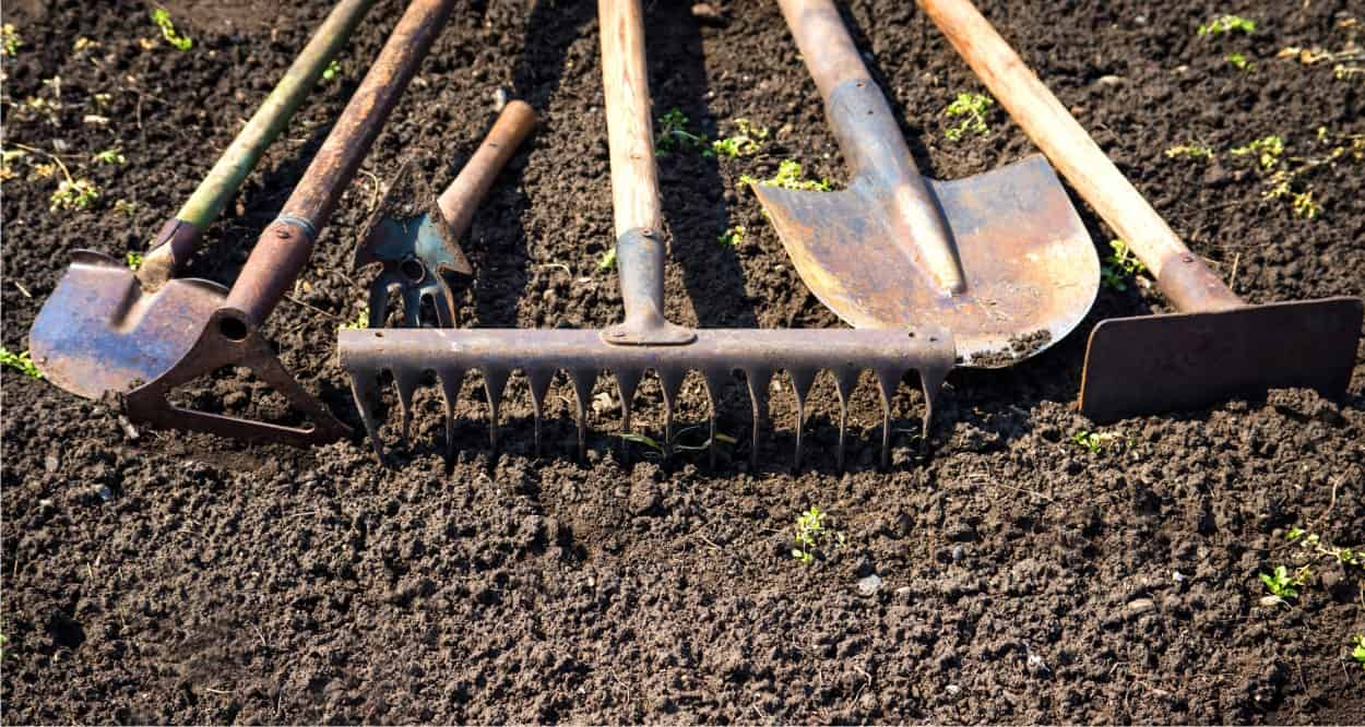terreno e lavorazione dell'orto