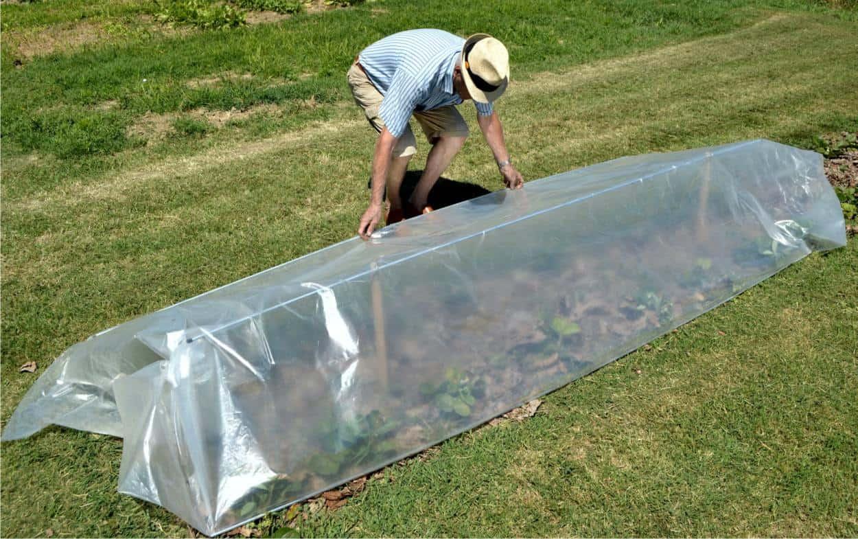 mini serra da orto