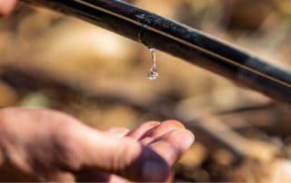 irrigazione minima
