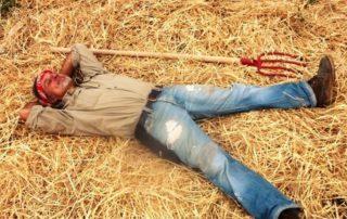 agricoltura del non fare secondo gian carlo