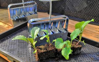 soil blocker cubettatrice