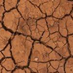Come coltivare un terreno argilloso