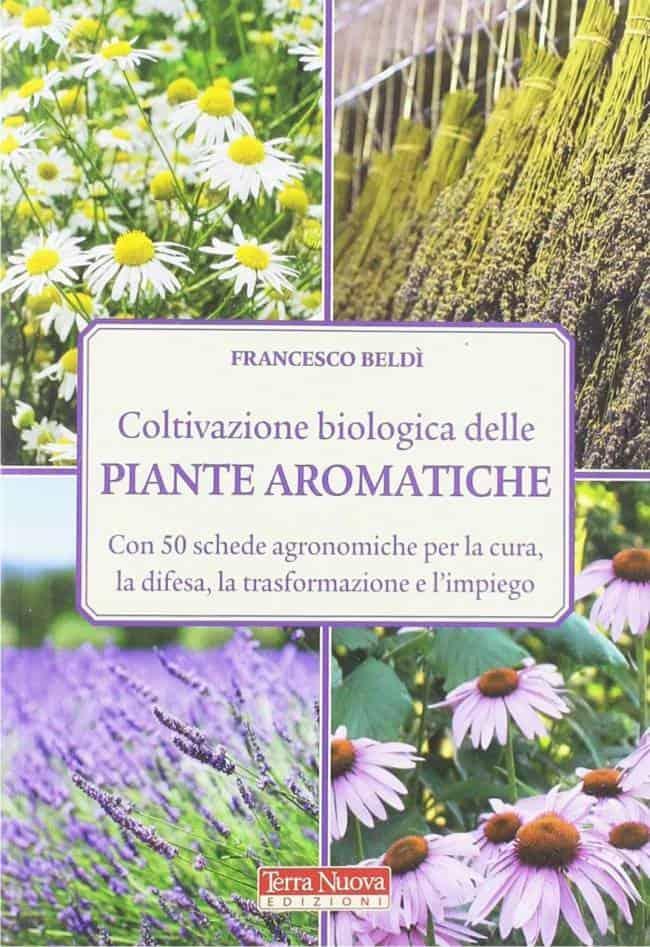 Coltivazione biologica delle piante aromatiche di Beldì