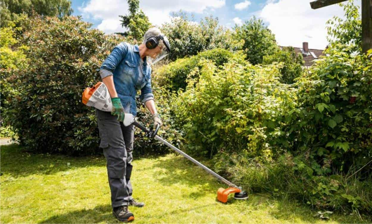 taglio bordure giardino con il dece
