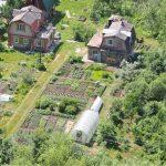 Cos'è la permacultura: origini e principi