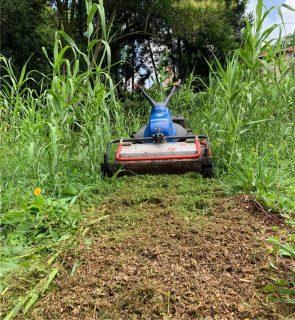 sfalcio erba