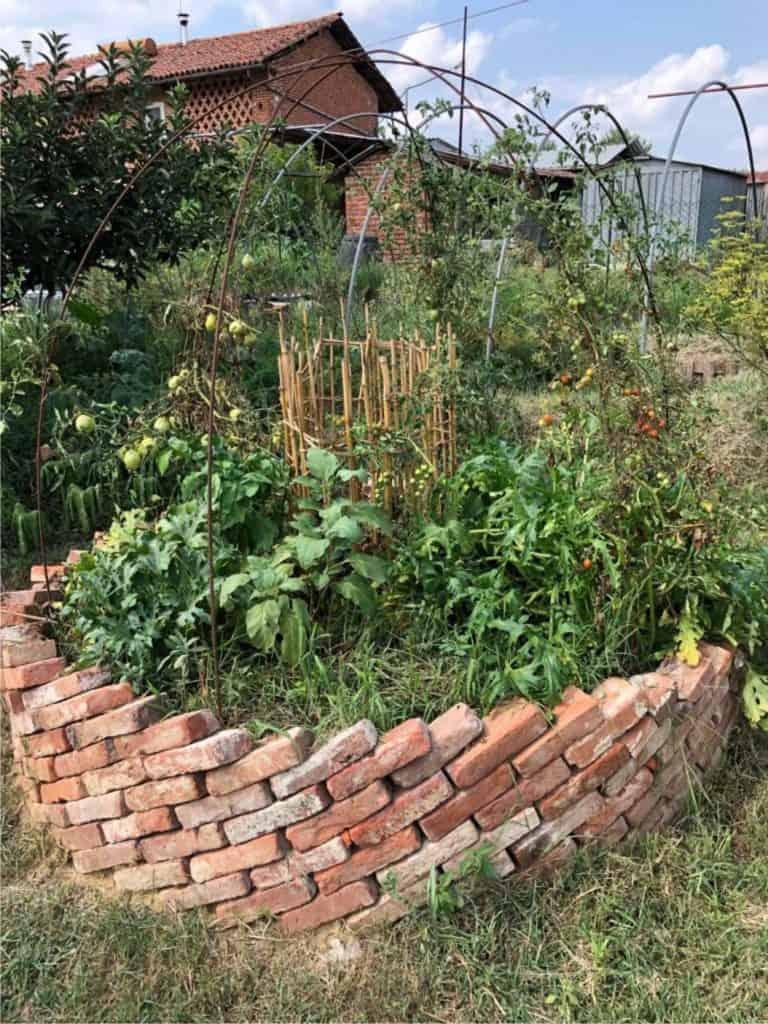 Il keyhole garden con piante orticole