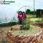 Keyhole garden: cos'è e come costruirlo