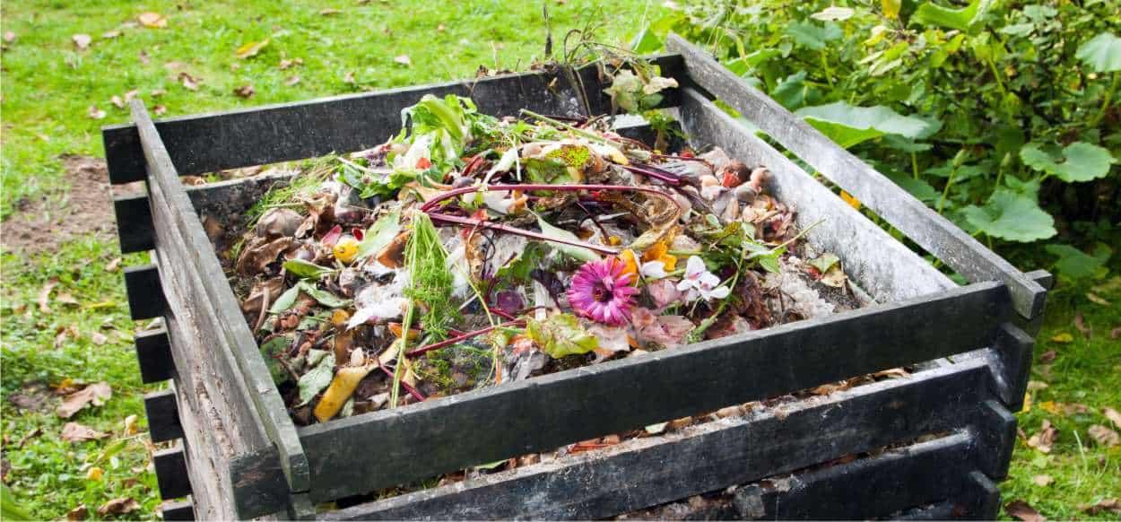 compostaggio per il principio di non fare rifiuto
