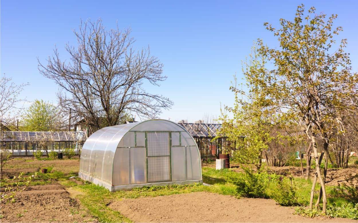Costruire Una Mini Serra Riscaldata serre per orto: metodo per coltivare e caratteristiche