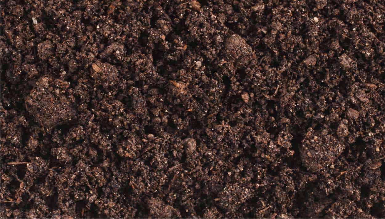 Disinfettare il terreno dell'orto in modo biologico
