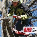 Seghe da potatura ARS: lame e qualità made in Japan