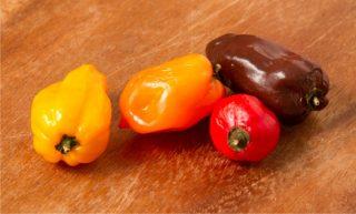 peperoncini varieta