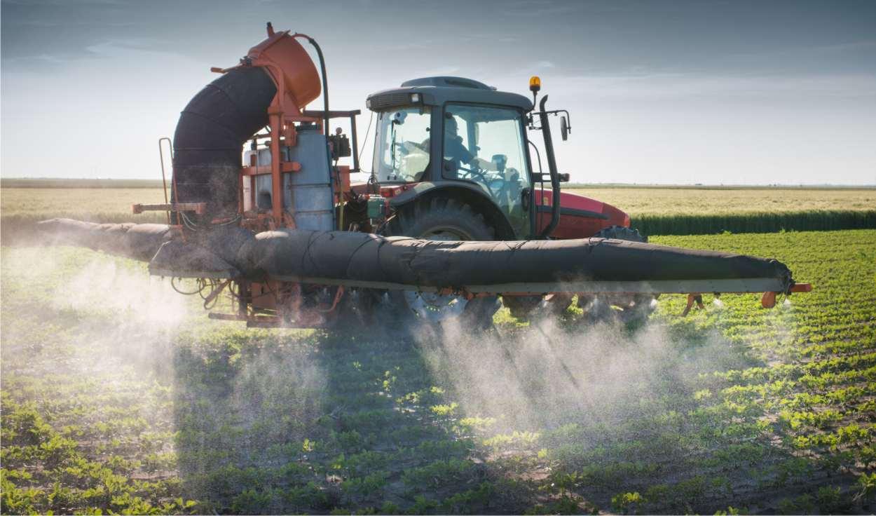 Pesticidi: rischi e conseguenze