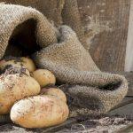 Coltivare patate nel sacco: ecco come fare