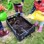Orto in cassetta: come farlo coi bambini