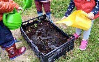 orto in cassetta coi bambini