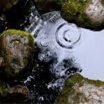 Acqua piovana: risorsa preziosa per l'orto