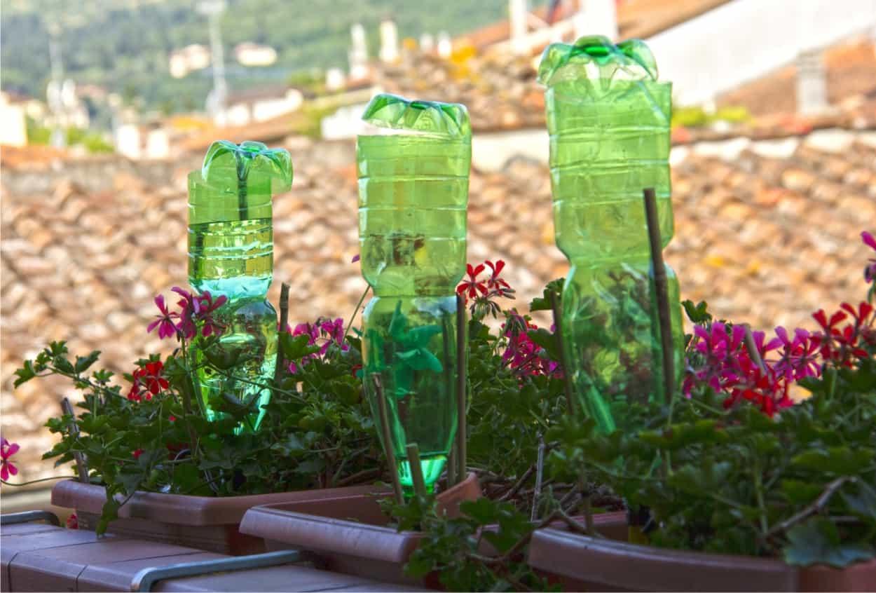 bottiglie per irrigazione durante le vacanze