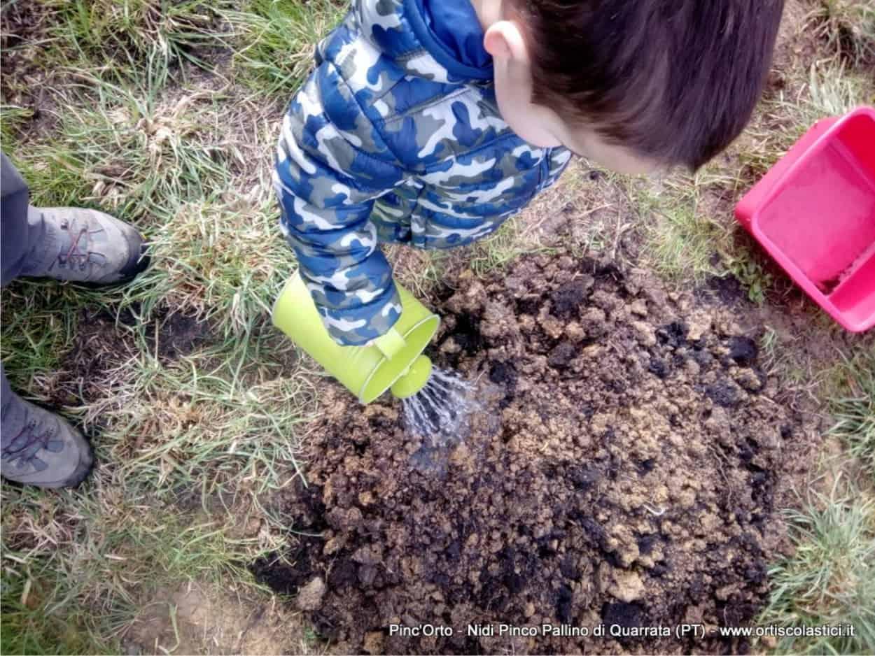 irrigare il giardino commestibile