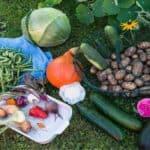 Spostamenti consentiti per l'orto: il chiarimento del governo