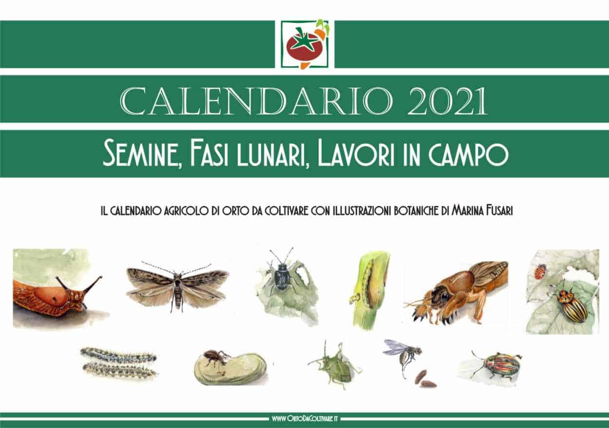 calendario orto 2021
