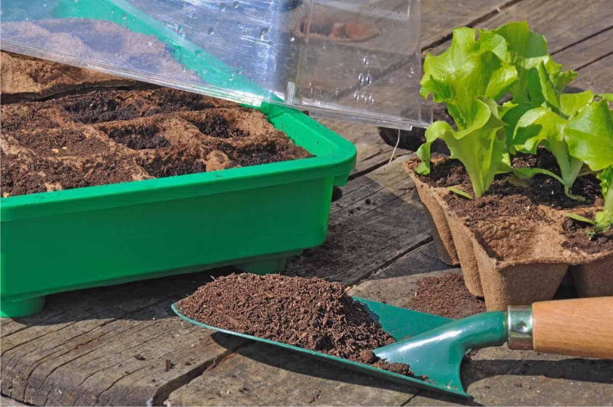 Impostare l'orto a inizio anno